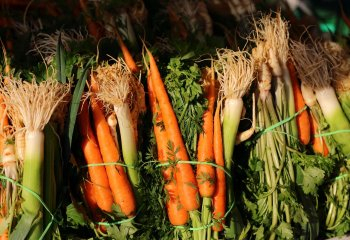Gli 8 alimenti più ricchi di fibre