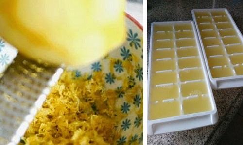 Come Conservare Scorza E Succo Di Limone